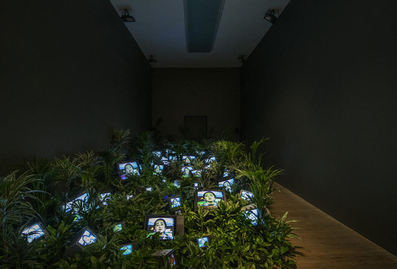 TV Garden 1974-1977 (2002). Install view, Tate Modern 2019. Live plants, cathode-ray tube televisions and video, colour, sound, installation dimensions variable. Kunstsammlung Nordrhein-Westfalen, Dusseldorf. All works by Nam June Paik © Estate of Nam June Paik. Photo credit: Andrew Dunkley ©Tate.